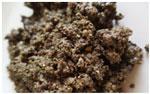 obzharka-semen-konopli