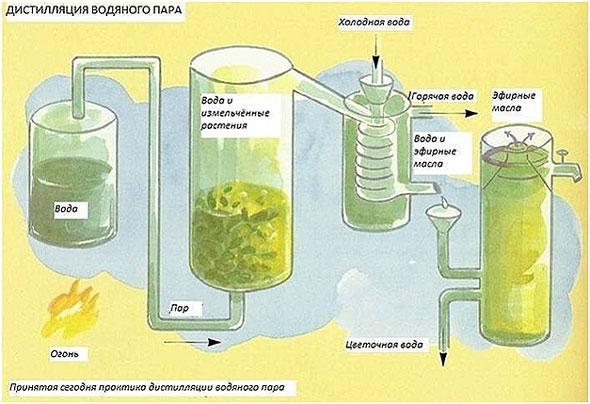 proizvodstvo-jefirnyh-masel