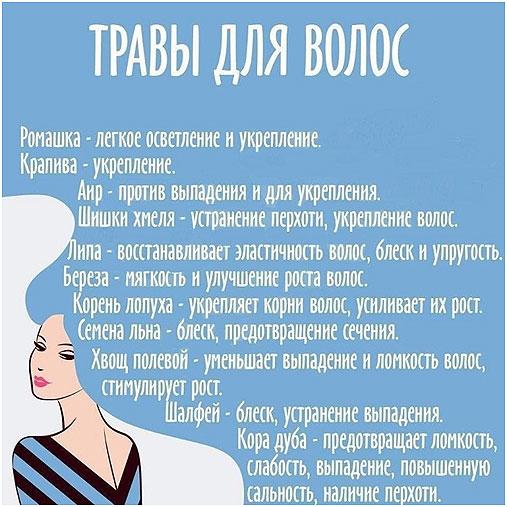 travy-dlja-volos