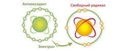 dioksid-kremnija-okazyvaet-antioksidantnoe-dejstvie