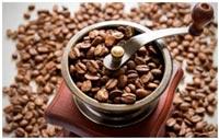 izmelchenie-kakao-bobov