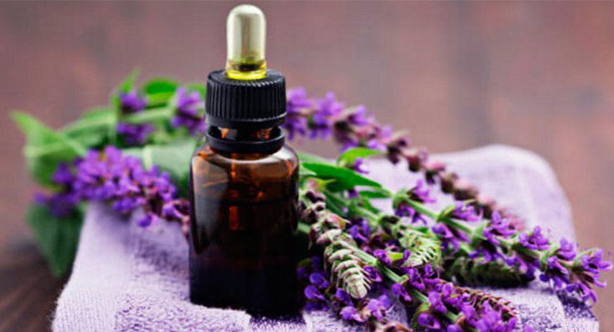 10 способов использовать эфирное масло шалфея для лица