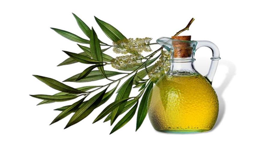 6 способов, как применять масло чайного дерева от папиллом