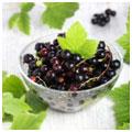 podgotavlivaem-jagody