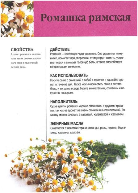 pupavka-blagorodnaja-svojstva