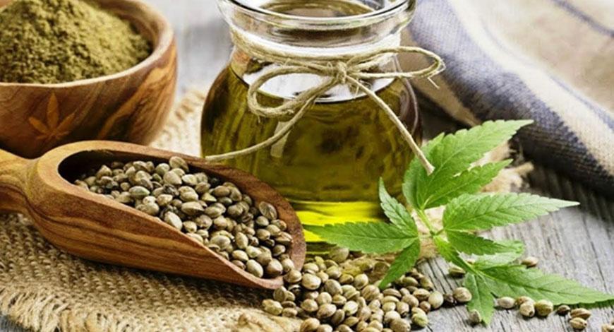 2 главных противопоказания к употреблению конопляных семечек