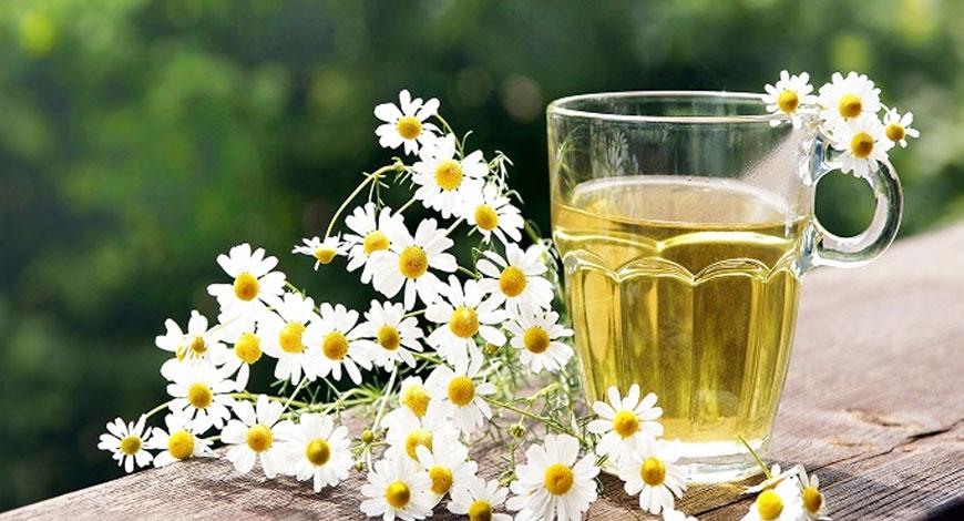 5 аргументов не о пользе, а о вреде ромашкового чая для мужчин