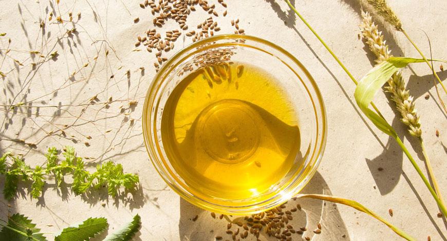 ТОП-8 полезных свойств сыродавленного кедрового масла