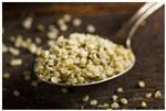 zamochit-semena-konopli-v-vode